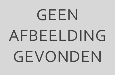 Nederlandse boeken en prenten